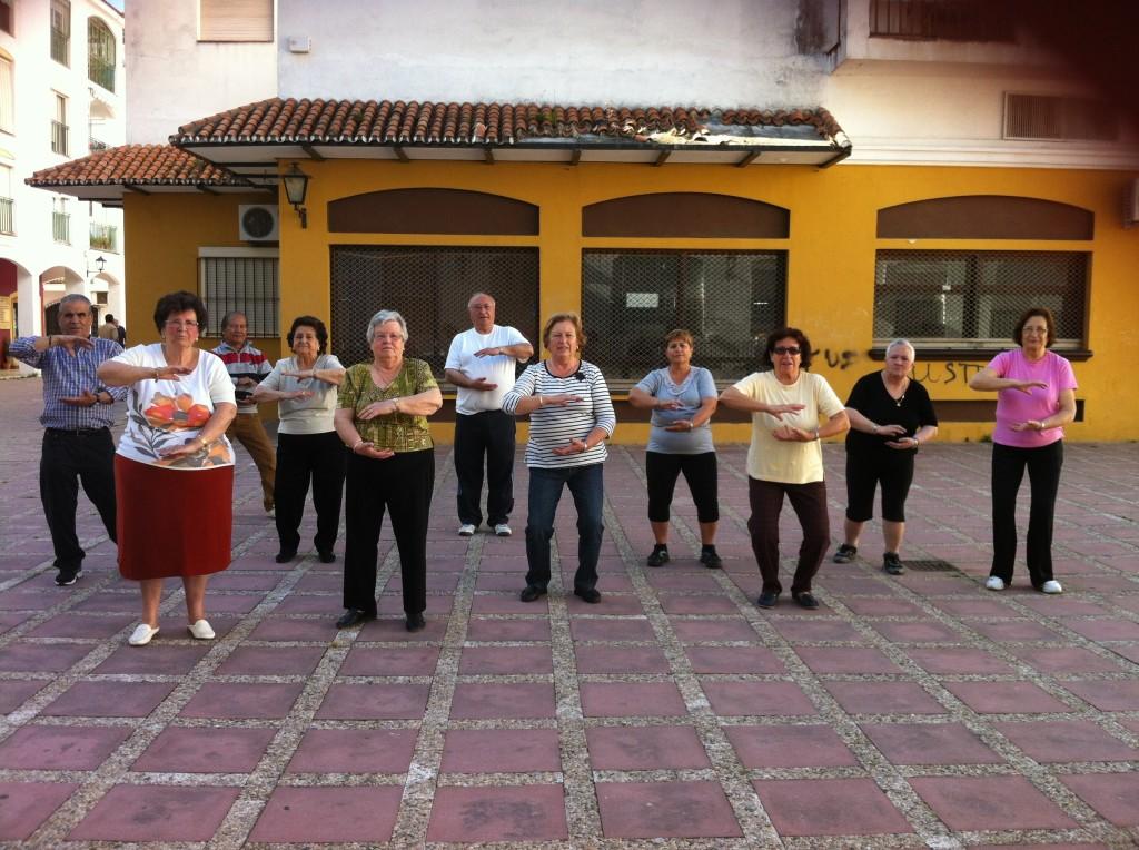 Chi Kung Centro de Mayores San Pedro de Alcantara