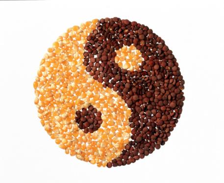 yin-yang comida