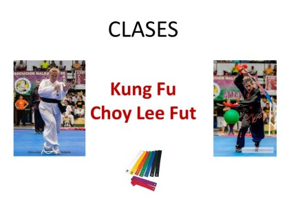 clases Kung Fu Choy Lee Fut